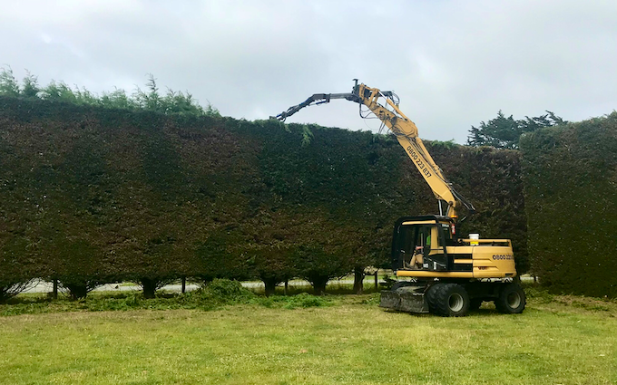 Hedge & shelterbelt trimming with Hedge cutter/mulcher at Mill Road