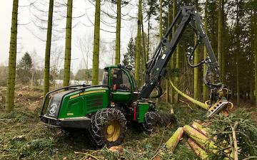 Bækkevang skovservice v/ preben andersen med Skovning/beskæring ved Aakirkeby