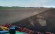 Rodstedgaarde markdrift med Strigle ved Suldrup
