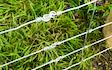 S.r.m. fencing with Fencing at Steynton