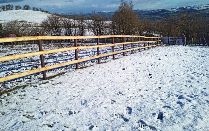 Jenx plant ltd with Fencing at Llanelli