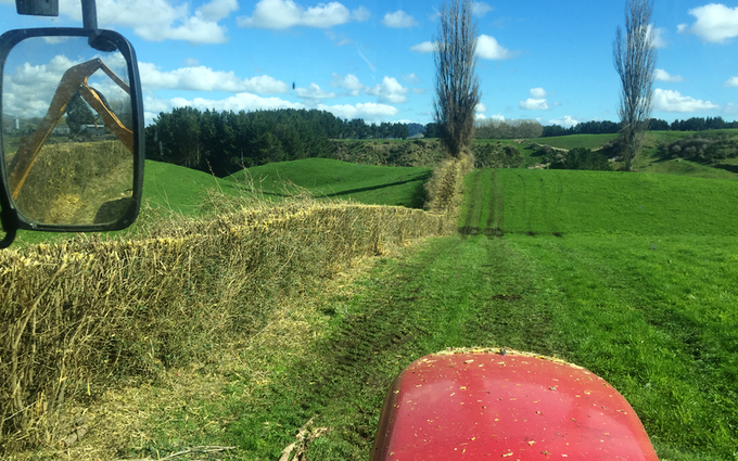 All trimmed up with Hedge cutter/mulcher at Kinleith