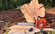 Avlund skov & træpleje med Skovning/beskæring ved Ringsted