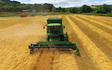 Wildwoods contractors with Combine harvester at United Kingdom