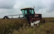 Haydn wesley & son ltd with Windrower at Millthorpe Drove