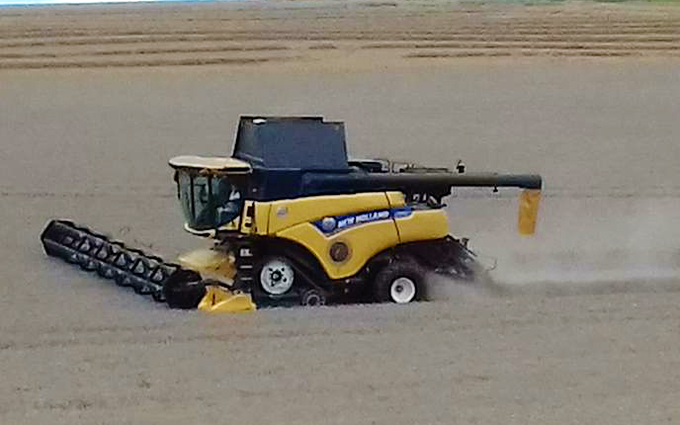 Cornbury farm contracting ltd with Combine harvester at West Lavington