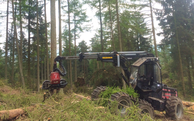 Askew forestry with Forestry harvester at Lawkland
