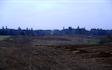 Grenknuserens skovservice med Rodfræser/Stubfræser ved Hobro
