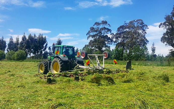 Chapman agriculture ltd  with Forage harvester at Cust