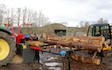 Wee jim landscapes with Log splitter at United Kingdom