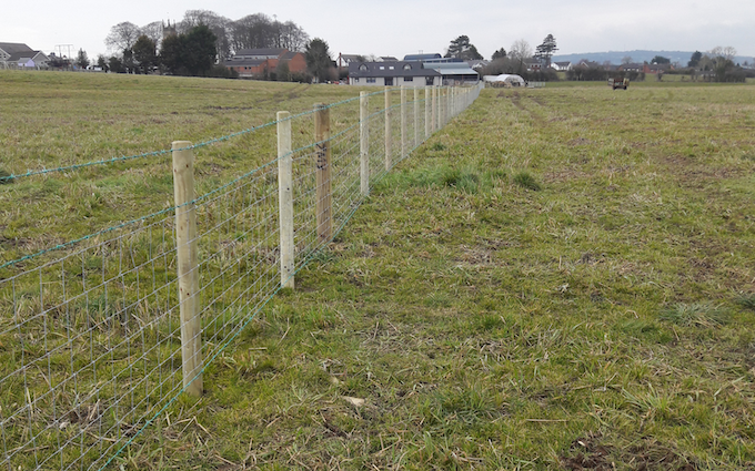 Jonathan livingstone  with Fencing at Lislasly Road