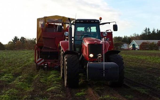 Hjortlund landbrug & maskinstation med Kartoffeloptager ved Grindsted