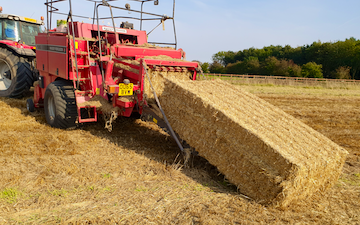 Towse contracts with Large square baler at Cliffe Lane