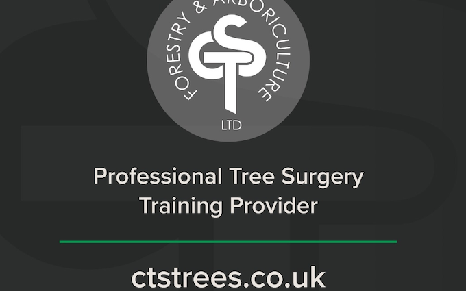 Cts forestry & arboriculture ltd with Chain saw at Kineton