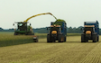 H c beales and co with Forage harvester at Great Ellingham