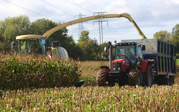 Alternative fertiliser solutions  with Forage harvester at Sutton Benger