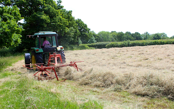 Belsham farming with Rake at United Kingdom