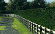 Cambridge hedgecutting ltd with Hedge cutter/mulcher at Cambridge