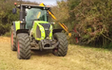 Darsdale contracts limited  with Hedge cutter at Ringstead