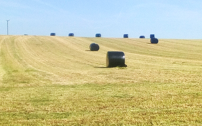 Wolds contracting with Round baler at Acklam
