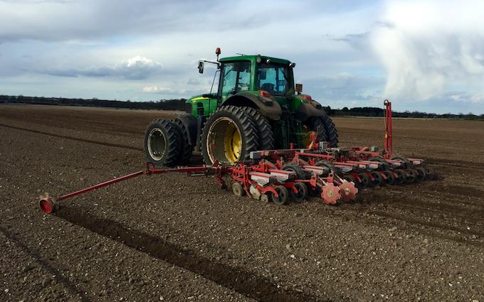 Td agri ltd with Precision drill at Bury Saint Edmunds