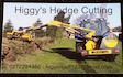 Higgy's hedge cutting with Hedge cutter/mulcher at Leeston
