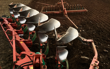 Wilson contractors with Plough at United Kingdom