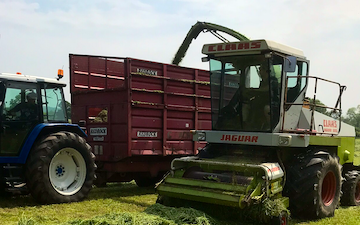 Ede's contracting services  with Forage harvester at Stramshall