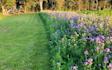 Dreyer entreprenør. landbrug.skov med Fræser ved Odense