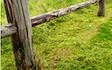 Mobakken med Afpudser ved Guderup