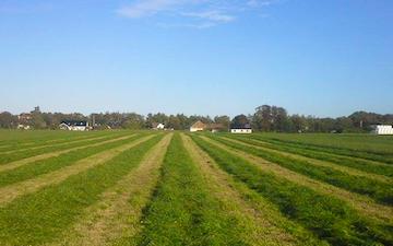Firma marcus westergren med Skårlægger ved Nørresundby