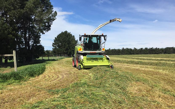Chamberlain agriculture ltd with Forage harvester at Sheffield