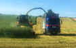 Peter corcoran contracting ltd  with Forage harvester at Maitland