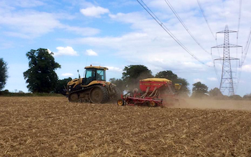 Norfolk straw products ltd with Drill at United Kingdom