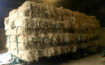 Pattacott farm agricultural contracting with Flat trailer at Maxworthy