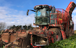 G w farming  with Beet harvester at Rock