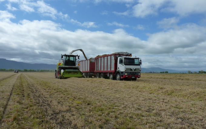 Jackson contracting  with Silage trailer at Tauhei