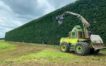 Agpower shelter trimming  with Hedge cutter/mulcher at Waipukurau