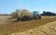 Iwersen agro med Bigballepresser ved Tinglev