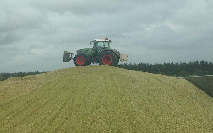 Varde maskinstation amba med Traktor til stakkørsel ved Varde
