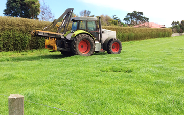 Kalin contracting ltd with Hedge cutter/mulcher at Manaia