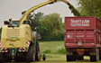 Trivett & son with Forage harvester at Baxterley
