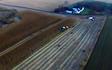 Grenknuserens skovservice med Helskudshøstning ved Hobro