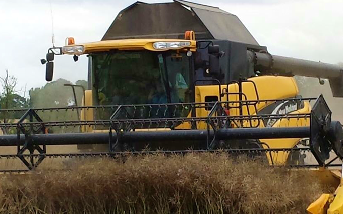 Cowton farming company  with Combine harvester at North Cowton