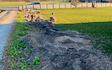 Mr skov og anlæg med Rodfræser/Stubfræser ved Ringsted