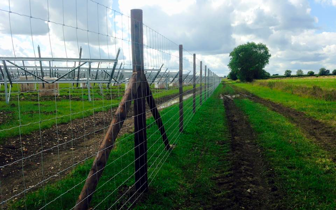 Southern countryside services  with Fencing at Penshurst