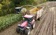 Lamyman grange contractors with Silage/grain trailer at Digby