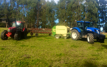 Miln contracting  with Round baler at Glentui