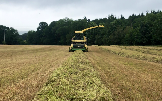 John clements contracting ltd with Forage harvester at Camomile Way