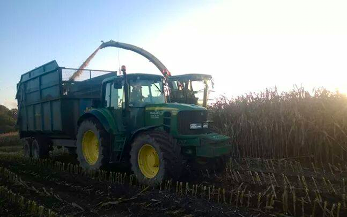 Nick ley contractors  with Forage harvester at Cookbury